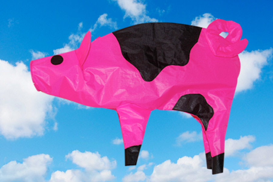 A pink and black pig shaped wind sock