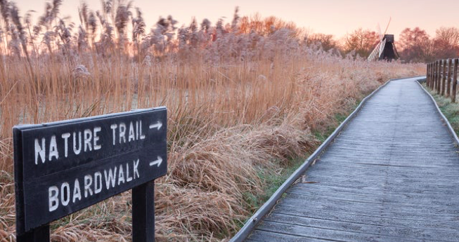 "A field with tall brown grass with a wooden pathway on one side. There is a sign which reads ""Nature Trail and Boardwalk"""