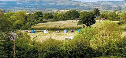 A green field surrounded by green trees with a number of tents in the middle