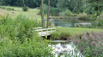 A green field with a small bridge in the middle over a small stream