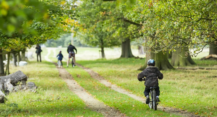 The image is focused on a young boy on a small bicycle, in the distance ahead of him is his mum and dad, and another sibling who is also on a bike. They are on a track surrounded by green grass.