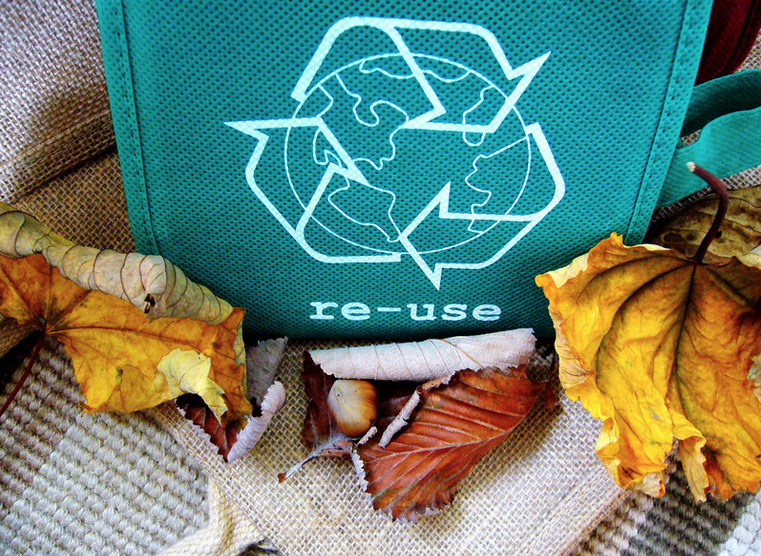 """A green recycling bag, printed with the word """"re-use"""", surrounded by leaves."""
