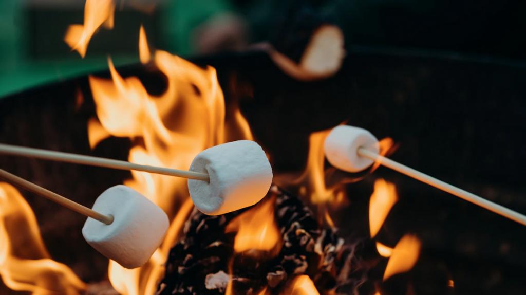 marshmellows on sticks over a campfire