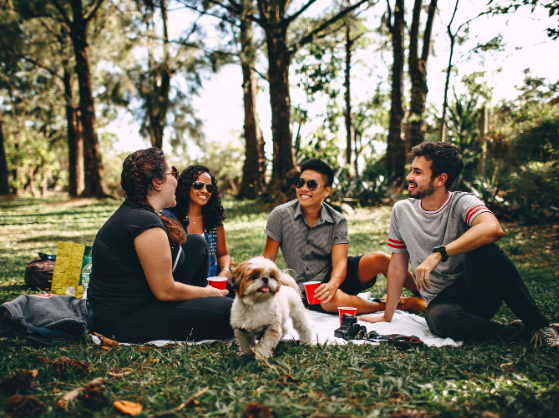 A group of people sat on the grass having a picnic with a small dog infront of them.