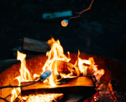A campfire with toasted marshmallows on sticks