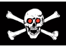 Red Eyed Pirate Flag
