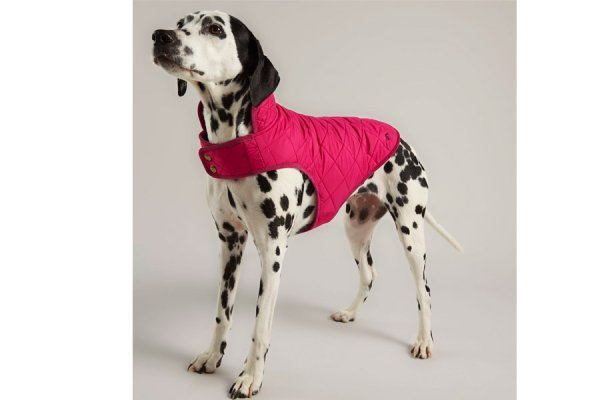 Joules Pink Fuschia Quilted Pet Coat
