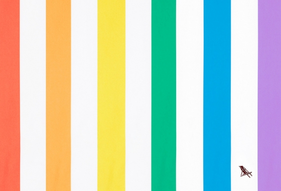 Rainbow Stripe Dock & Bay Towel