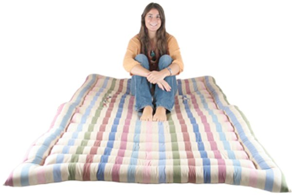 Double Roll Up Bed
