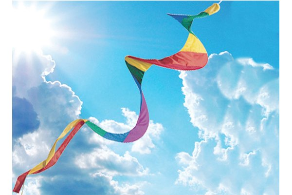 Wind Twister Windsock 200cm long