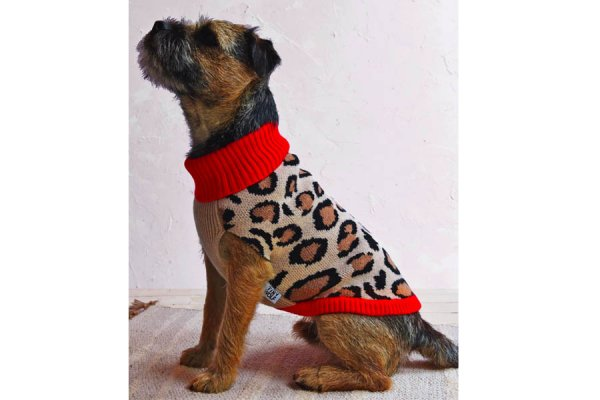Dog Leopard design Wool Coat
