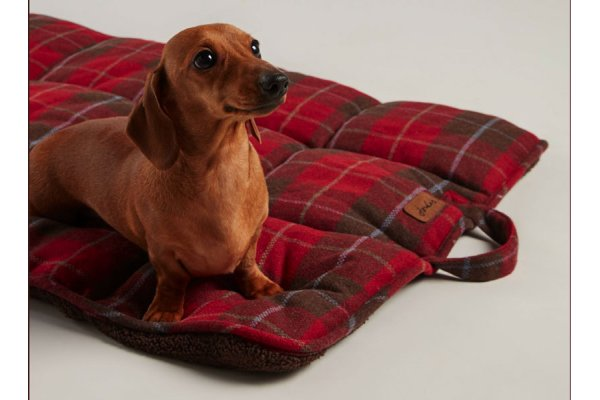 Joules Travel Dog Bed