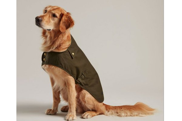 Joules Wax Pet Coat